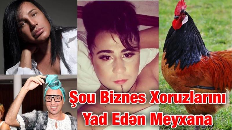 Emil Tenha Gencevi Shou Maqazin Zoologiya 2020 Official Music Video
