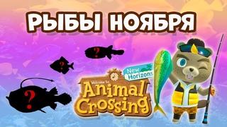 Все рыбы Ноября в игре Animal Crossing: New Horizons (0+)