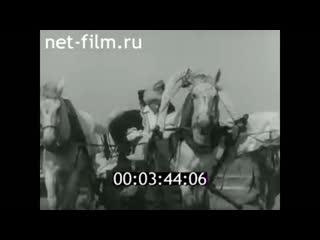 с.Кушнаренково день сельского хозяйства. 1981 год.