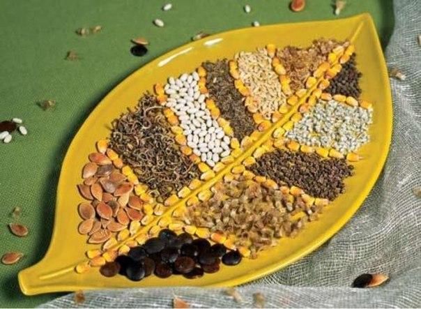 7 ВАЖНЕЙШИХ ПРАВИЛ ВЫБОРА СЕМЯН Выбор семян невероятно увлекательное занятие, которое может вызвать массу эмоций. К сожалению, не только положительных, но и отрицательных. Чтобы выбор был