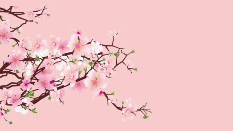 Free Type beat Sakura prod by Skitcha