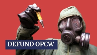 Syria stripped of OPCW member rights after staged incidents