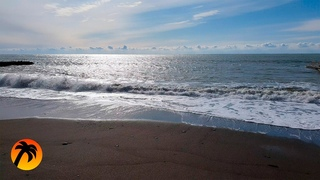Calm Sea and Relaxing Sound of Waves in Spring