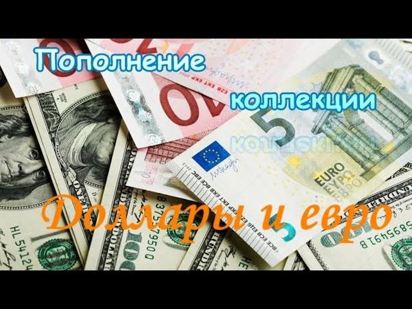 Пополнение коллекции банкнотами Доллары и евро