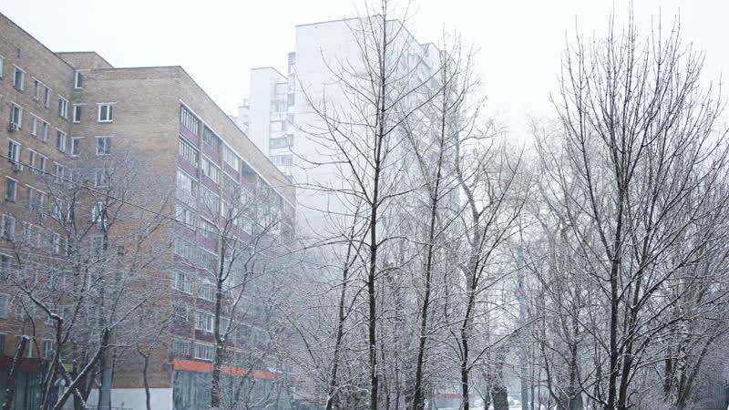 В Приморье за сутки выпало до трех месячных норм осадков