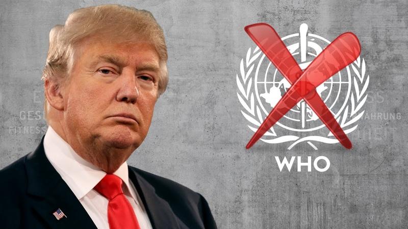 12 Corona Donald Trump KILLT die WHO sofort gucken