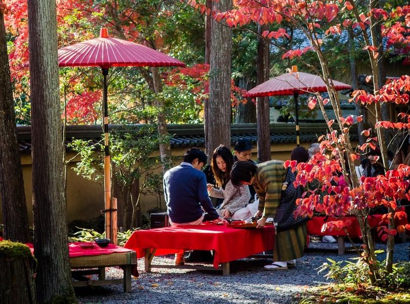 Что нужно для поездки в Японию., изображение №6