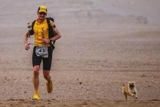 Друг пробежал марафон поздравления