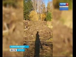 Большую свалку почвы и корней обнаружили местные жители в Тулунском районе. Оказалось, всё санкционировано